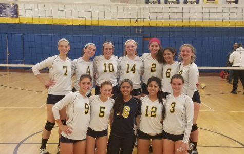 Colonia's varsity volleyball team soars to the GMCs