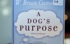 A Dog's Purpose receives damaging backlash in the face of animal rights controversy