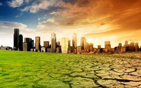 The Growth of Climate Change