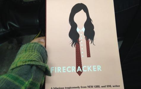 Iserson's first novel, Firecracker, has interesting plot