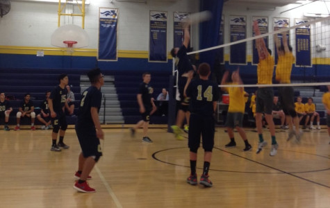 Colonia defeats Watchung adding more wins to their season.