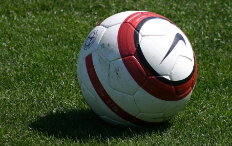 The soccer ball as it's waiting to be kicked around.