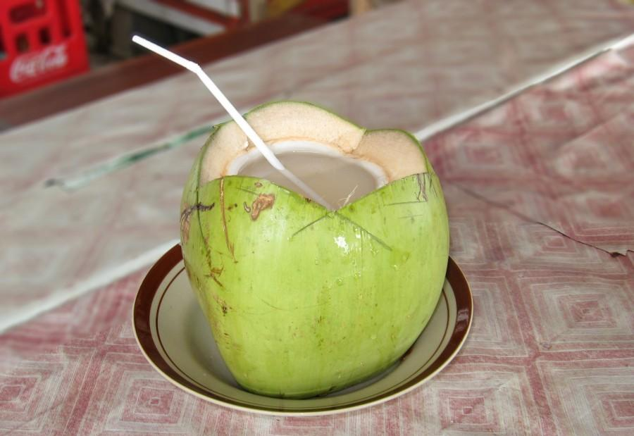 Coconut+water+can+be+used+as+blood+plasma