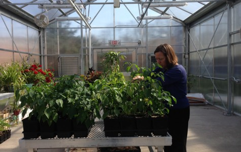 Colonia High School's greenhouse benefits whole community
