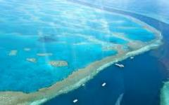 The Great Barrier Reef to die indefinitely