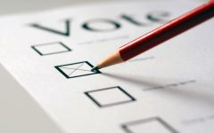 The power of the vote: Why young adults should take interest in this year's elections