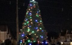 7th Annual Colonia tree lighting ceremony helps spread holiday cheer for township kids