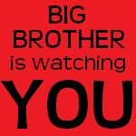 What can we expect from this unexpected season of Big Brother