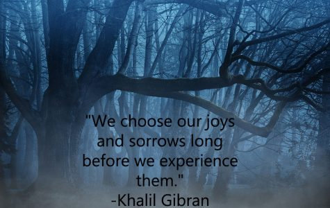 """We choose our joys and sorrows long before we experience them."""
