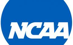 A Year In Review: College Volleyball