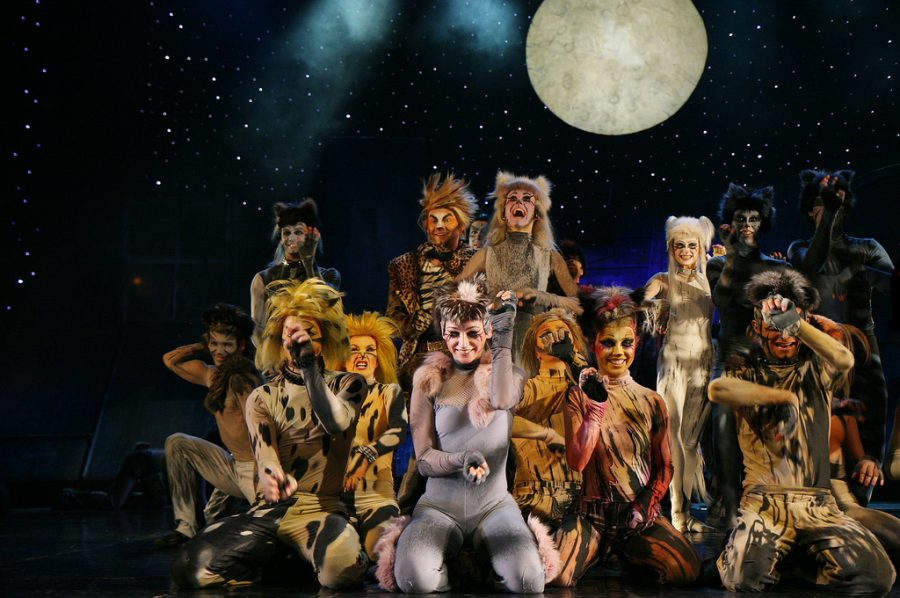 Cats the musical is exactly what it sounds like
