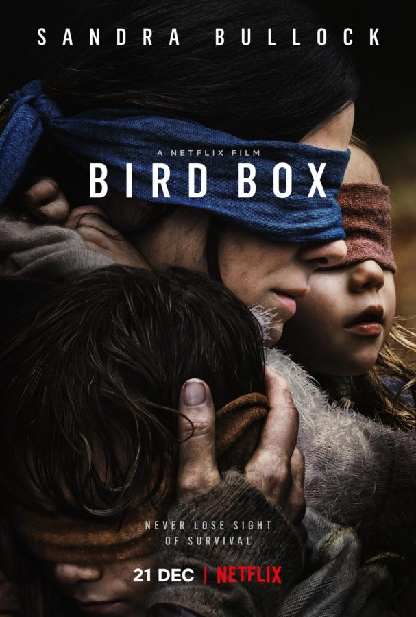 The netflix movie that broke records, Bird Box