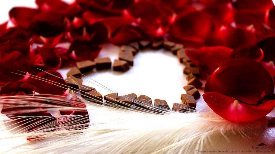 Happy+Valentines+Day+everyone%21