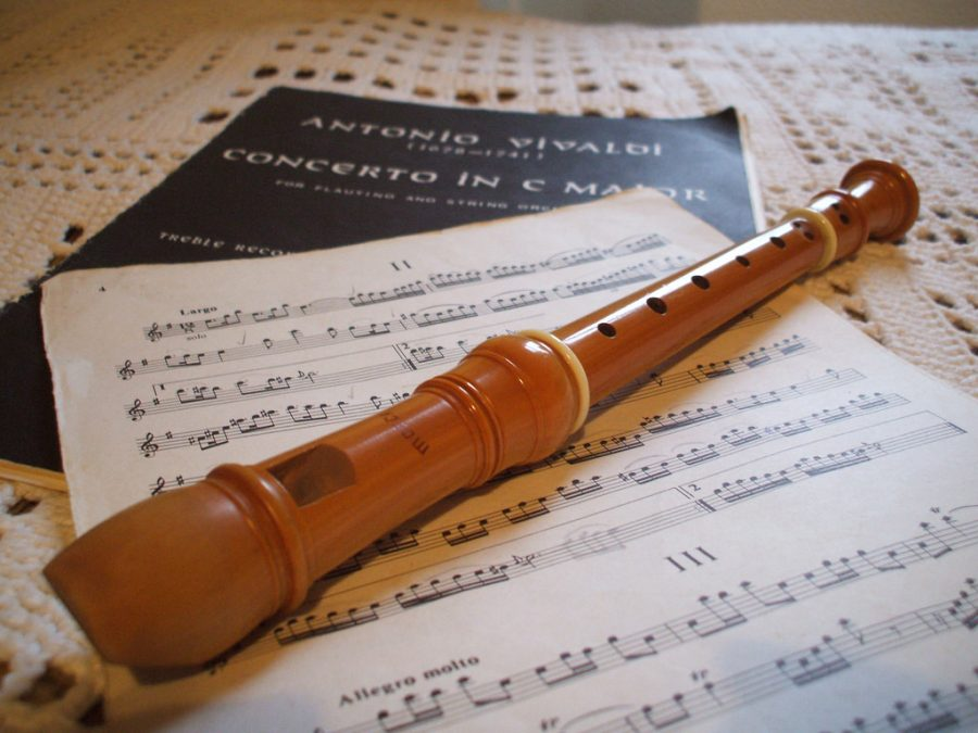 A fipple is the mouthpiece of a recorder or similar wind instrument.