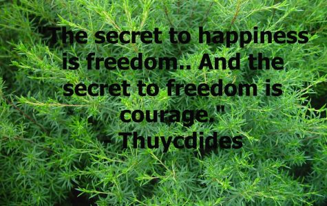 """The secret to happiness is freedom.. And the secret to freedom is courage."""