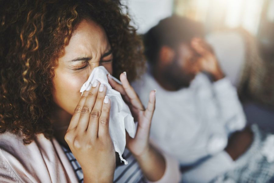 Sternuator is a chemical substance that causes sneezing.