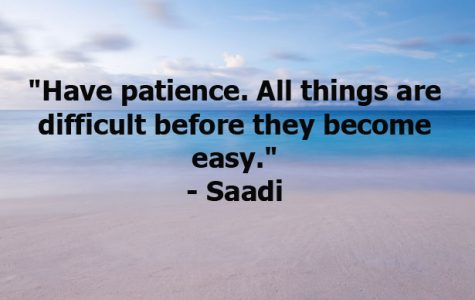"""Have patience. All things are difficult before they become easy."""
