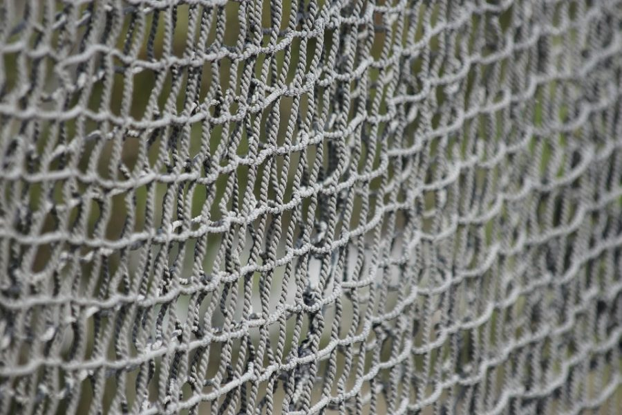 Retiform is composed of crossing lines and interstices, like a net.
