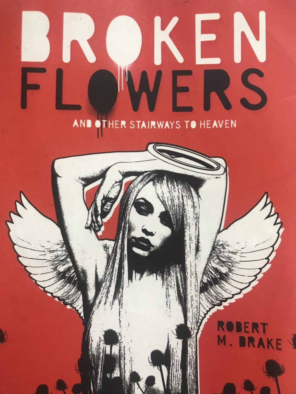 The book cover for 'Broken Flowers and Other Strairways to Heaven' by Robert M. Drake.