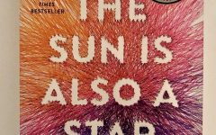 The Sun Is Also A Star: anything but a boring book