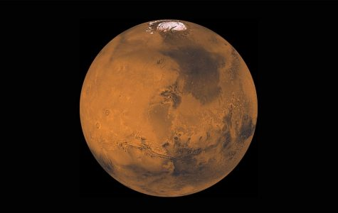 Mars has the largest dust storms in the Solar System