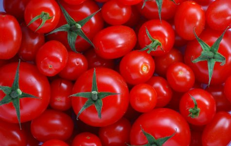 Some people may think a Tomato is a vegetable, when it is a fruit.