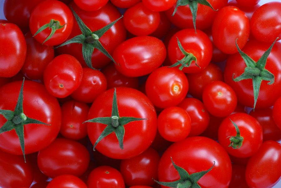Some+people+may+think+a+Tomato+is+a+vegetable%2C+when+it+is+a+fruit.