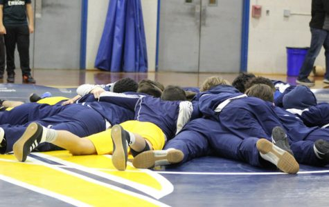 Colonia's wrestling team goes the District tournament