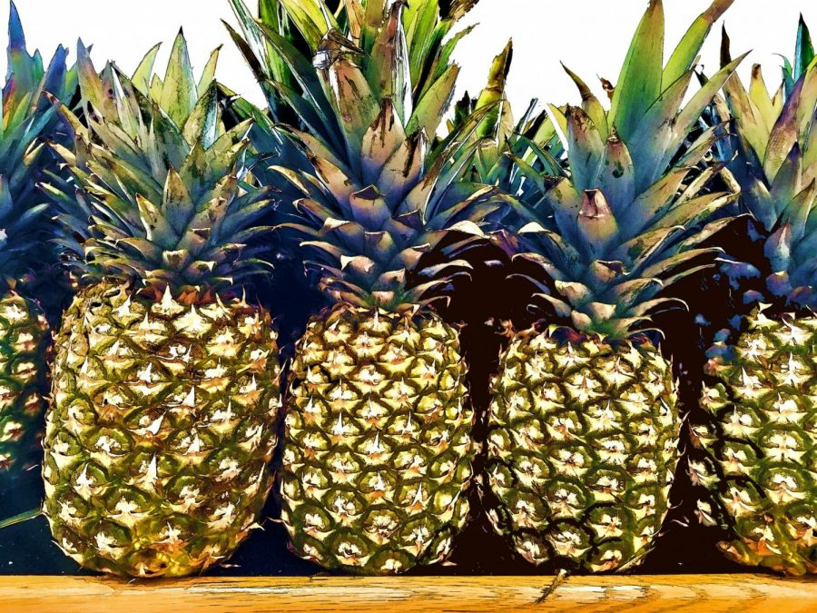 A Pineapple is a type of citrus fruit