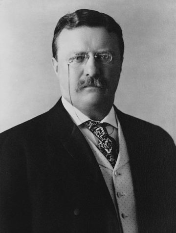 Theodore Roosevelt Jr. was an American statesman, politician, conservationist, naturalist, and writer who served as the 26th president of the United States from 1901 to 1909. He served as the 25th vice president from March to September 1901 and as the 33rd governor of New York from 1899 to 1900