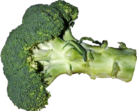 Broccoli heads are also called florets
