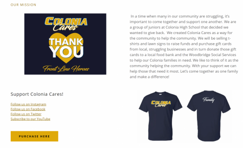 Creating the Colonia Cares website as a marketing tool
