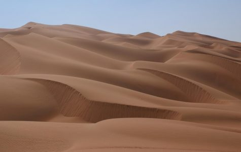 A desert is filled with a lot of sand