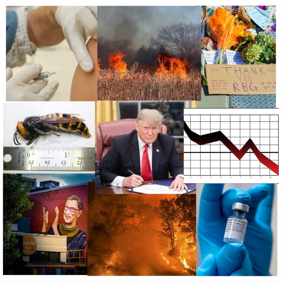 Through all the bad in 2020, exciting and new things are awaiting in 2021. 2020 taught Americans about endurance; we endured the pandemic, natural disasters and even a stock market crash.