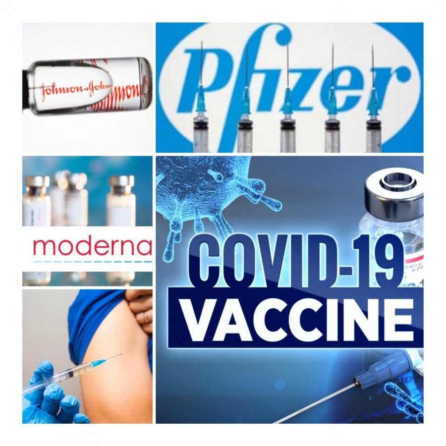 On December 15th, 2020, New Jersey hospitals began providing vaccinations for people serving in health facilities. As the vaccination of COVID-19 begins distribution; nurses, elders, and first-responders are feeling pressure to get the vaccine immediately. Since the uprising, companies such as Pfizer, Moderna, and possibly Johnson & Johnson have dissected vaccinations.